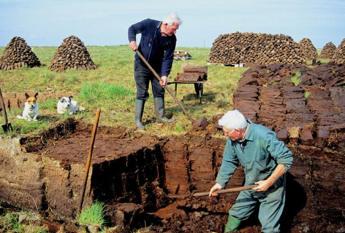 Men hard at work cutting peat